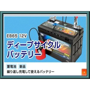 EB65 ディープ サイクル バッテリー 蓄電池 新品 ecofuture