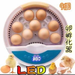 【新品】自動孵卵器 インキュベーター 家庭用小型鳥類専用孵卵器 ヒヨコ生まれ 子供教育用 家庭用 詳しい日本語説明書付き新品|ecofuture