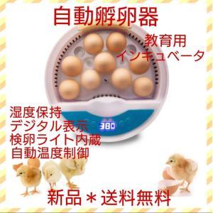 自動孵卵器 インキュベーター 検卵ライト内蔵鳥類専用ふ卵器 孵化器 9個入卵 y|ecofuture
