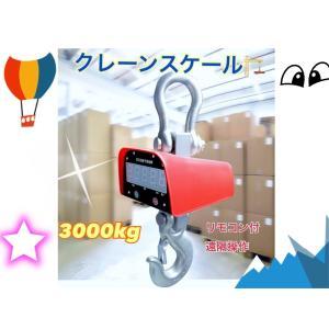 充電式 デジタル クレーンスケール 吊秤 3トン 3000kg 3t クレーンスケール 吊りはかり 計量 はかり リモコン付き!! 業者 ecofuture