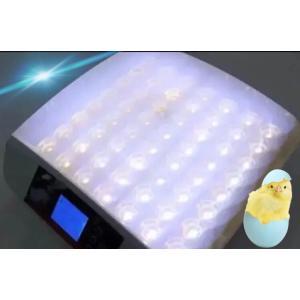 全自動孵卵器 孵卵機 ふ卵器 孵化器 インキュベーター 最大56個  送料無料 y|ecofuture