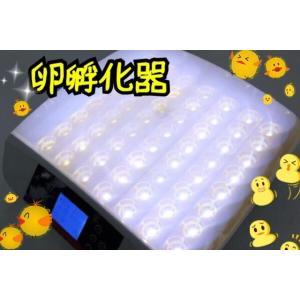 最大56個 全自動孵卵器 孵卵機 ふ卵器 孵化器 インキュベーター|ecofuture