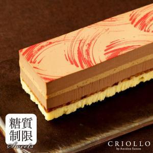 バレンタイン ホワイトデー 糖質制限チョコレートケーキ スリム・プラリネ・ノワゼット 長方形 約2〜...
