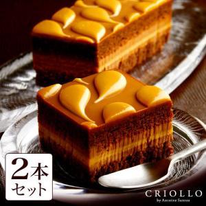 【6月8日発送開始】チョコレートケーキ キャラメル・ショック 約2〜3名用のお得な2本セット 長方形...