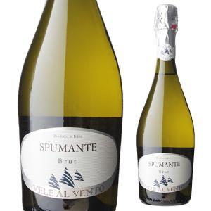スパークリングワイン ヴェレ アル ヴェント スプマンテ ブリュット デコルディ イタリア 750ml 辛口 発泡|ecoledwine
