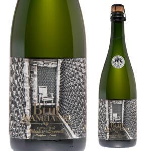 シードル ブリュット ヤーニハンソ スパークリングワイン 750ml エストニア りんご リンゴ酒 辛口 金賞受賞|ecoledwine
