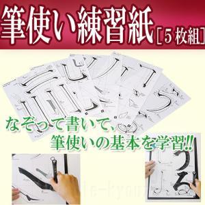 筆使い練習紙[5枚組] 繰り返し学習出来る基礎練習シート  ネコポス