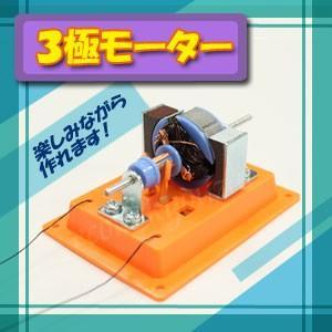3極モーターA2個セット 強力な3極モーターを自作する工作キット ecolekyouzai