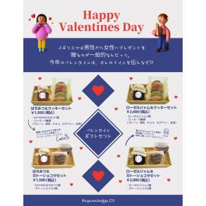 バレンタインギフト はちみつ&クッキーセット|ecolocle