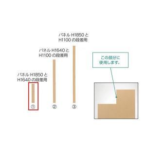 SP2パネル 段差連結エンドカバー 段差210mm用 *設置サービス付き (376900) JT-SPE-0210NK|economy