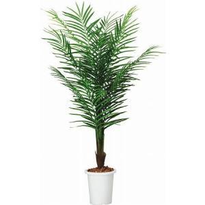 コクヨ 人工植物〈アイレストグリーン〉 アレカパーム 高さ1800mm PX-GRP18|economy