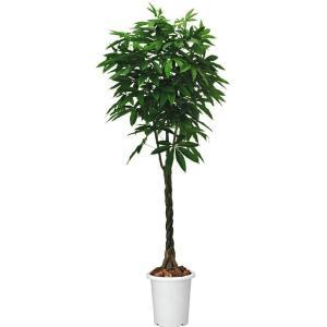 コクヨ 人工植物〈アイレストグリーン〉 パキラ 高さ1400mm PX-GXP14|economy
