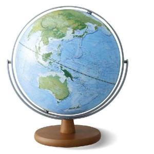 レイメイ藤井 土地被覆タイプ地球儀(全回転) 30cm OYV260 「地球地図プロジェクト」モデル 地球儀スケール付