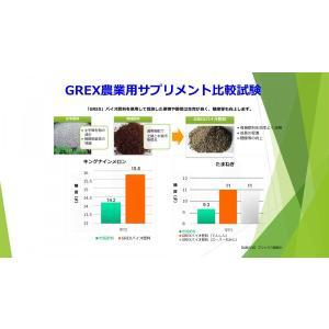 【予約注文品!TPP対策に最適!植物100%だから安心!】GREXバイオ肥料業務用100kg(5反歩分)|ecorex|03