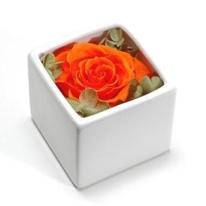 プリザーブドフラワー オレンジ CUBE プレゼント 記念日 公式通販サイト|edc