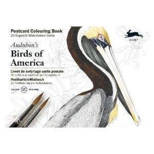 カラーリングブック ポストカード アメリカの鳥 ぬりえ ギフト プレゼント 公式通販サイト