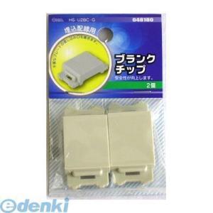 オーム電機  04-8180 ブランクチップ 2個入り HS-U2BC-G 048180|edenki