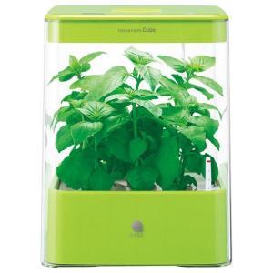 ユーイング 水耕栽培器 グリーン UH-CB01G1-G [UHCB01G1G]