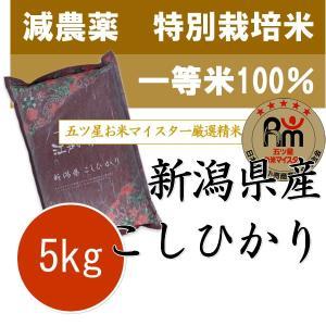 新潟産 コシヒカリ 5kg 特別栽培米 (減農薬米・減化学肥...