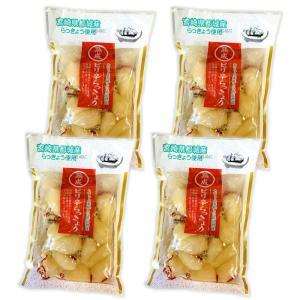 宮崎県都城産使用 熟成ピリ辛らっきょう4袋入 低温で熟成させ唐辛子でピリ辛味に仕上げました 送料無料...