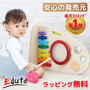 楽器 おもちゃ 1歳 誕生日プレゼント 楽器玩具 木のおもちゃ 1歳児 赤ちゃん 知育玩具 ランキング 木製 一歳 一歳児 玩具 お誕生日 名入れ無料