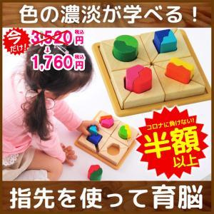 [ボイラの木のおもちゃ] フィットミーイン2 / 知育玩具 パズル 型はめ 誕生日 3歳 4歳 女の子 男の子 VOILA|edute