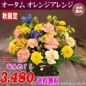 秋限定 オータムオレンジアレンジが3,480円 送料無料|eehana