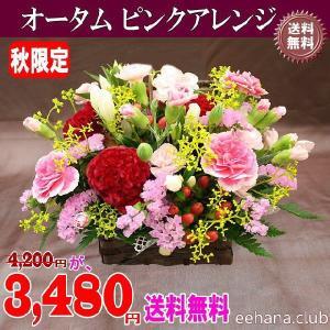 秋限定 オータムピンクアレンジ3,480円 送料無料|eehana