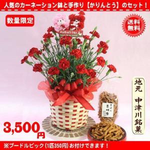 母の日 2021 花 ギフト母の日地元名物お菓子と赤カーネーション花鉢5号セット3,850円 送料無料 eehana