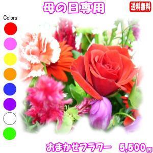 母の日 花 ギフト デザイナーにおまかせフラワー5,000円 送料無料   フラワーアレンジ・はちもの・カーネーション|eehana