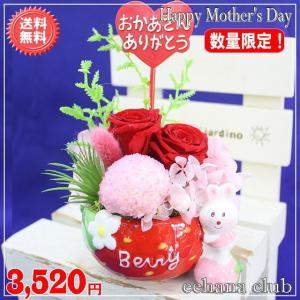 母の日 2021 プリザいちごレッド 今だけ3,520円 送料無料|eehana