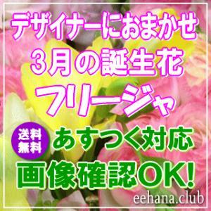 花 ギフト バースデー3月の誕生花 デザイナーにおまかせフラワー3,500円 送料無料   あすつく対応 フラワーアレンジ・花束 誕生日 eehana