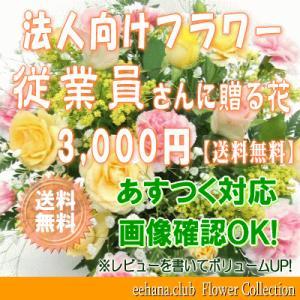 従業員さんに贈る花 3,000円      花束・アレンジ・プリザーブドフラワー・はちもの|eehana