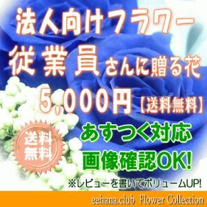 従業員さんに贈る花 5,000円      花束・アレンジ・プリザーブドフラワー・はちもの|eehana