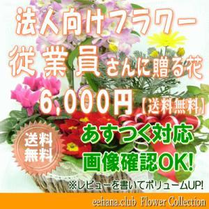 従業員さんに贈る花 6,000円      花束・アレンジ・プリザーブドフラワー・はちもの|eehana