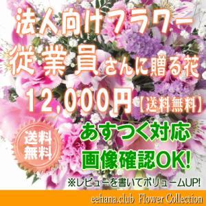 従業員さんに贈る花 12,000円   送料無料     花束・アレンジ・プリザーブドフラワー・はちもの|eehana