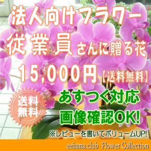 従業員さんに贈る花 15,000円   送料無料     花束・アレンジ・プリザーブドフラワー・はちもの|eehana