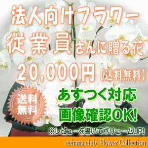 従業員さんに贈る花 20,000円   送料無料     花束・アレンジ・プリザーブドフラワー・はちもの|eehana