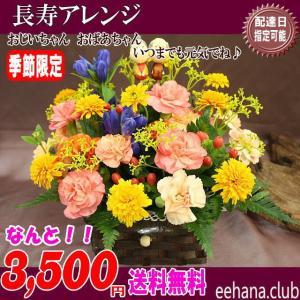 【あすつく対応不可】売れてます 人気の敬老の日長寿アレンジが3,480円 送料無料