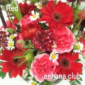 色で選ぶフラワー レッド 5,000円  花 ギフト バースデー お祝い プレゼント 結婚祝 出産祝 お見舞い|eehana
