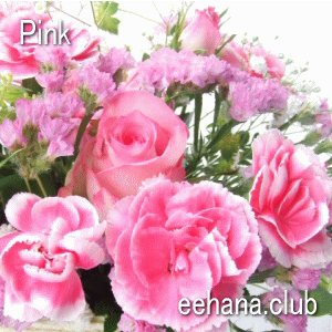 色で選ぶフラワー ピンク 3,000円  花 ギフト バースデー お祝い プレゼント 結婚祝 出産祝 お見舞い|eehana