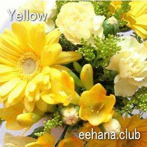 色で選ぶフラワー イエロー 3,000円  花 ギフト バースデー お祝い プレゼント 結婚祝 出産祝 お見舞い|eehana