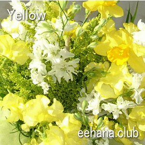 色で選ぶフラワー イエロー 5,000円  花 ギフト バースデー お祝い プレゼント 結婚祝 出産祝 お見舞い|eehana