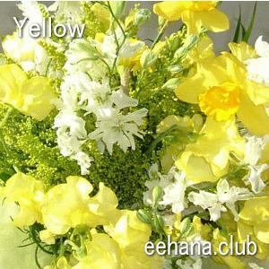 色で選ぶフラワー イエロー 10,000円  花 ギフト バースデー お祝い プレゼント 結婚祝 出産祝 お見舞い 送料無料|eehana