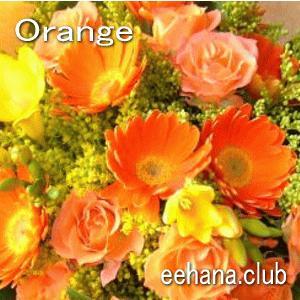 色で選ぶフラワー オレンジ 3,000円  花 ギフト バースデー お祝い プレゼント 結婚祝 出産祝 お見舞い|eehana