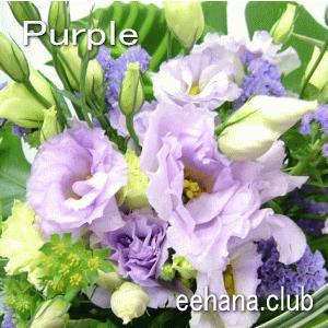 色で選ぶフラワー パープル 5,000円  花 ギフト バースデー お祝い プレゼント 結婚祝 出産祝 お見舞い|eehana