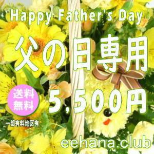 父の日に贈る花 デザイナーにおまかせ5,000円【送料無料】  花束・アレンジ・プリザーブドフラワー・はちもの|eehana