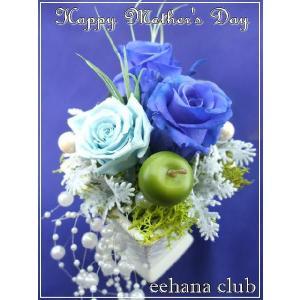 母の日 花 ギフト プリザーブドフラワー爽やかブルー3,500円 送料無料|eehana