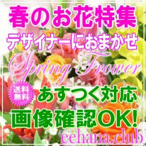 春の贈りもの デザイナーにおまかせ7,000円 送料無料   15時まであすつく対応|eehana