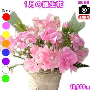 花 ギフト バースデー1月の誕生花デザイナーにおまかせ10,000円 送料無料 あすつく対応 フラワーアレンジ・花束